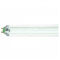 energy-saving-fluorescent-lamps-871150089311625-philips